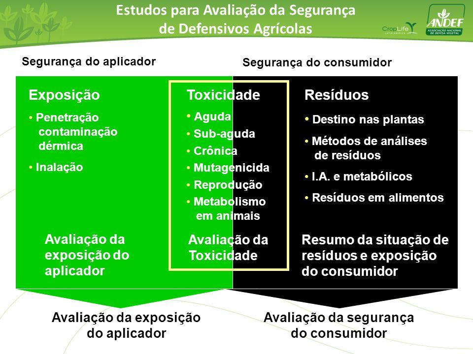 Segurança do aplicador Exposição Penetração contaminação dérmica Inalação Segurança do consumidor Avaliação da exposição do aplicador Avaliação da seg