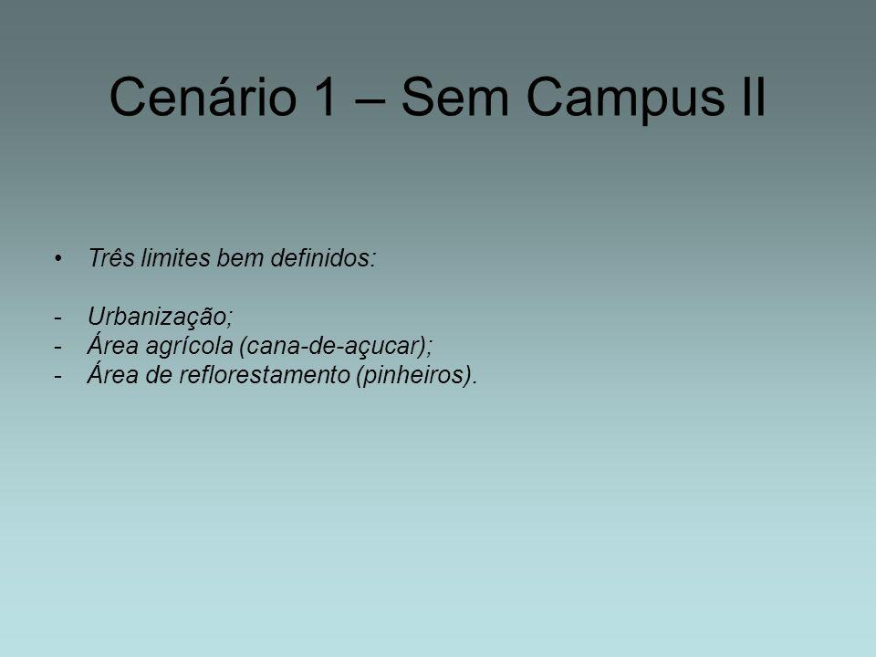 Cenário 1 – Sem Campus II Três limites bem definidos: -Urbanização; -Área agrícola (cana-de-açucar); -Área de reflorestamento (pinheiros).