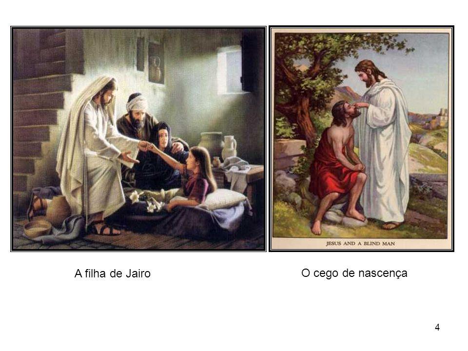 64 Procure Jesus nas coisas simples; na lágrima, no afago, na alegria pura, no trabalho honesto, no gesto fraterno, no poema à vida, enfim, em tudo que eleva e ilumina.