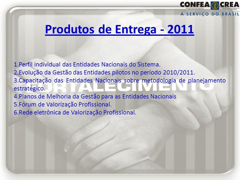 Produtos de Entrega - 2011 1.Perfil individual das Entidades Nacionais do Sistema. 2.Evolução da Gestão das Entidades pilotos no período 2010/2011. 3.