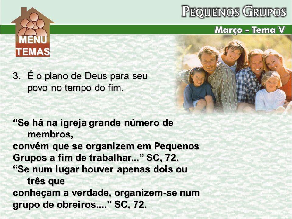 3.É o plano de Deus para seu povo no tempo do fim. Se há na igreja grande número de membros, convém que se organizem em Pequenos Grupos a fim de traba