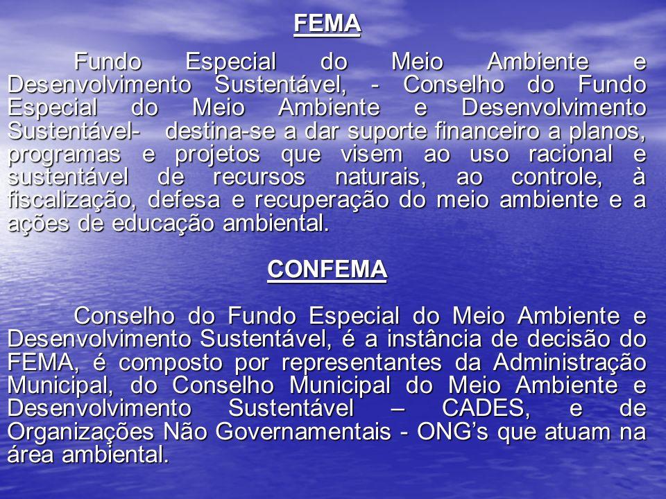 FEMA Fundo Especial do Meio Ambiente e Desenvolvimento Sustentável, - Conselho do Fundo Especial do Meio Ambiente e Desenvolvimento Sustentável- desti