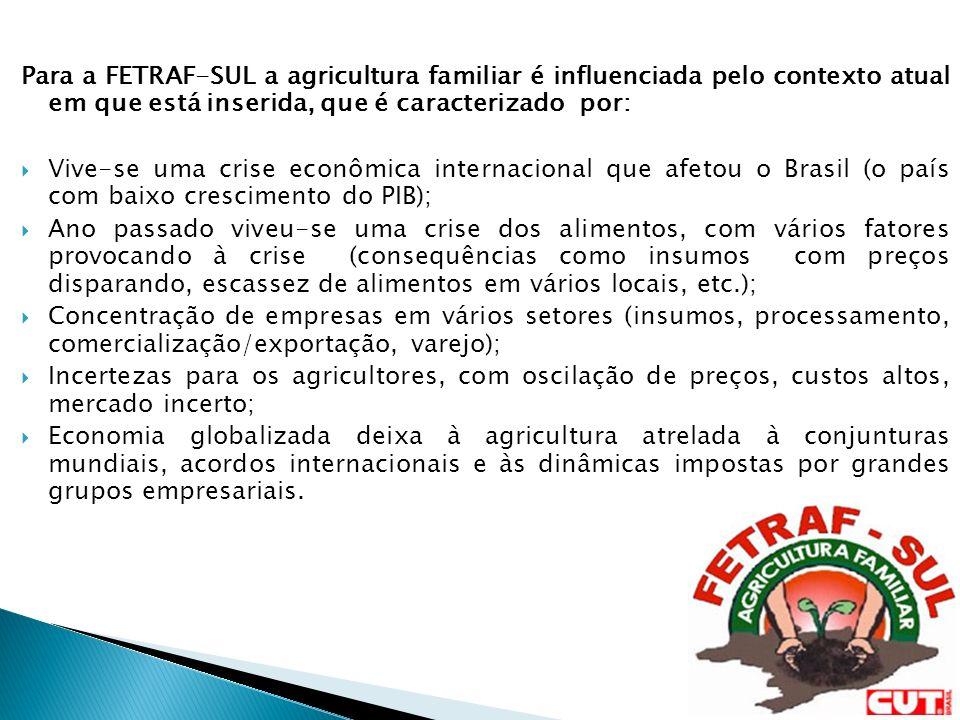 Para a FETRAF-SUL a agricultura familiar é influenciada pelo contexto atual em que está inserida, que é caracterizado por: Vive-se uma crise econômica internacional que afetou o Brasil (o país com baixo crescimento do PIB); Ano passado viveu-se uma crise dos alimentos, com vários fatores provocando à crise (consequências como insumos com preços disparando, escassez de alimentos em vários locais, etc.); Concentração de empresas em vários setores (insumos, processamento, comercialização/exportação, varejo); Incertezas para os agricultores, com oscilação de preços, custos altos, mercado incerto; Economia globalizada deixa à agricultura atrelada à conjunturas mundiais, acordos internacionais e às dinâmicas impostas por grandes grupos empresariais.