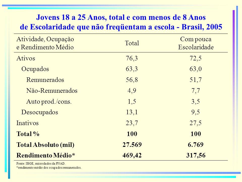 Jovens 18 a 25 Anos, total e com menos de 8 Anos de Escolaridade que não freqüentam a escola - Brasil, 2005 Atividade, Ocupação e Rendimento Médio Tot