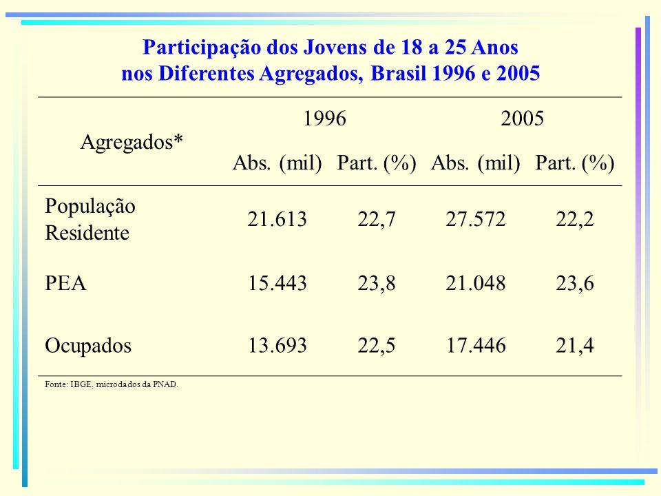 Participação dos Jovens de 18 a 25 Anos nos Diferentes Agregados, Brasil 1996 e 2005 Agregados* 19962005 Abs. (mil)Part. (%)Abs. (mil)Part. (%) Popula