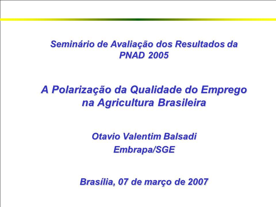 Seminário de Avaliação dos Resultados da PNAD 2005 A Polarização da Qualidade do Emprego na Agricultura Brasileira Otavio Valentim Balsadi Embrapa/SGE Brasília, 07 de março de 2007