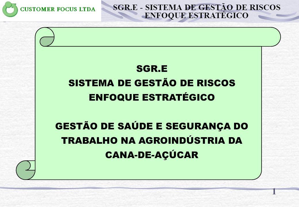 SGR.E SISTEMA DE GESTÃO DE RISCOS ENFOQUE ESTRATÉGICO GESTÃO DE SAÚDE E SEGURANÇA DO TRABALHO NA AGROINDÚSTRIA DA CANA-DE-AÇÚCAR 1 SGR.E - SISTEMA DE GESTÃO DE RISCOS ENFOQUE ESTRATÉGICO