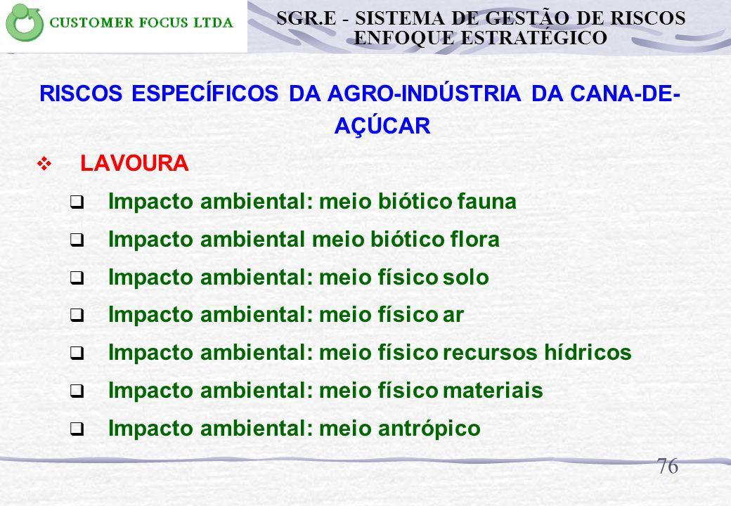 75 RISCOS ESPECÍFICOS DA AGRO-INDÚSTRIA DA CANA-DE- AÇÚCAR LAVOURA Uso de herbicidas / agrotóxicos Queimada da plantação de cana-de-açúcar Queimadas d