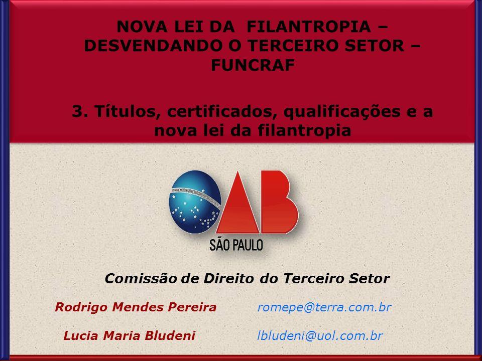 Comissão de Direito do Terceiro Setor Rodrigo Mendes Pereira romepe@terra.com.br Lucia Maria Bludeni lbludeni@uol.com.br Comissão de Direito do Tercei