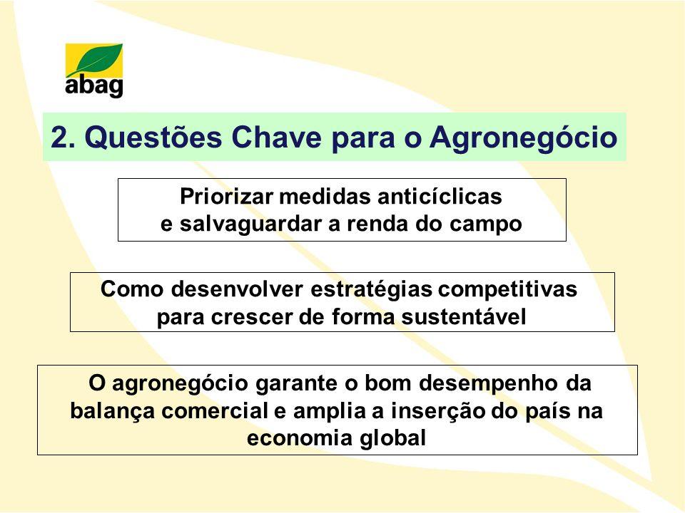 2. Questões Chave para o Agronegócio Como desenvolver estratégias competitivas para crescer de forma sustentável O agronegócio garante o bom desempenh