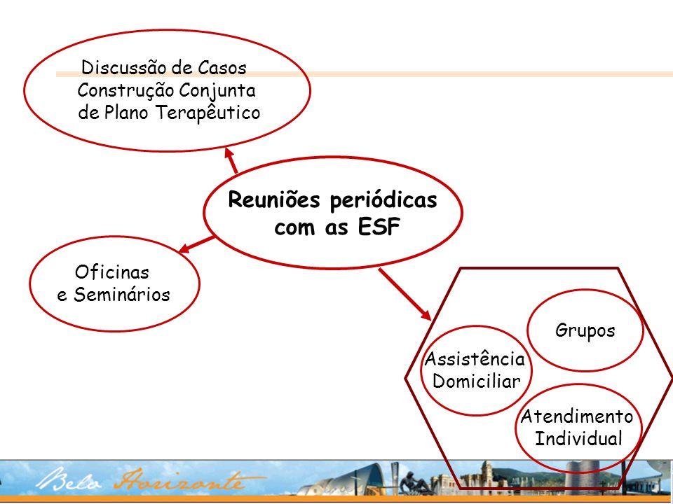 Reuniões periódicas com as ESF Discussão de Casos Construção Conjunta de Plano Terapêutico Oficinas e Seminários Grupos Assistência Domiciliar Atendim