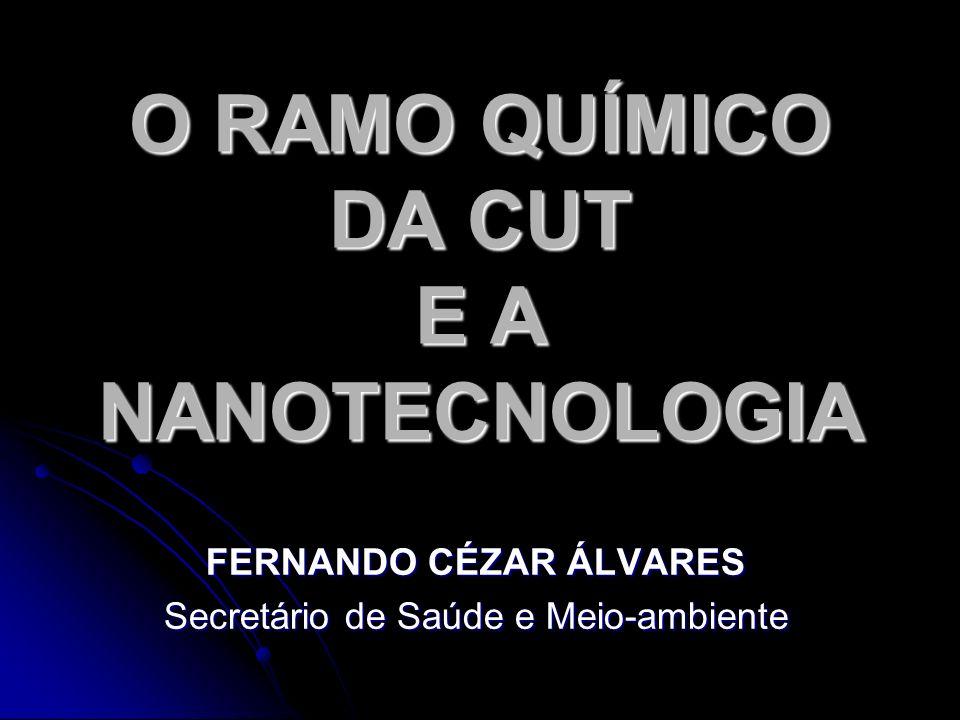 O RAMO QUÍMICO DA CUT E A NANOTECNOLOGIA FERNANDO CÉZAR ÁLVARES Secretário de Saúde e Meio-ambiente
