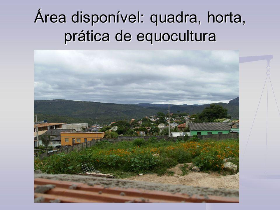Área disponível: quadra, horta, prática de equocultura