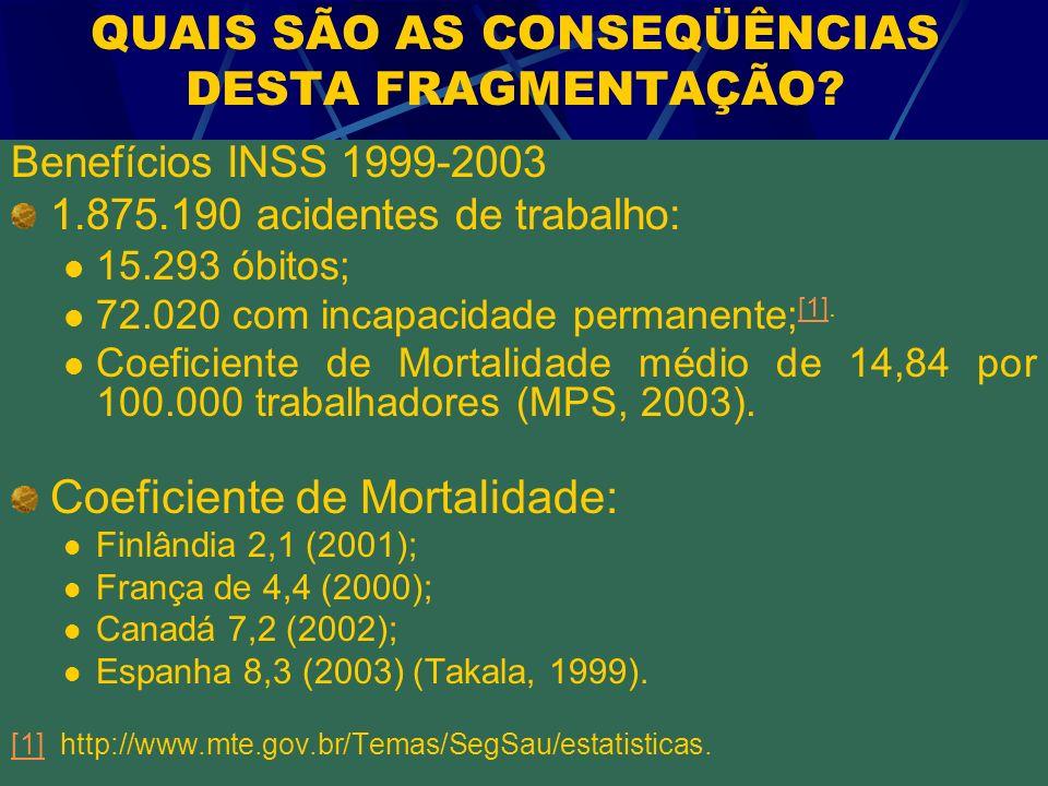 QUAIS SÃO AS CONSEQÜÊNCIAS DESTA FRAGMENTAÇÃO? Benefícios INSS 1999-2003 1.875.190 acidentes de trabalho: 15.293 óbitos; 72.020 com incapacidade perma