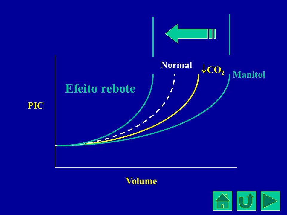 Normal CO 2 Manitol Efeito rebote Volume PIC