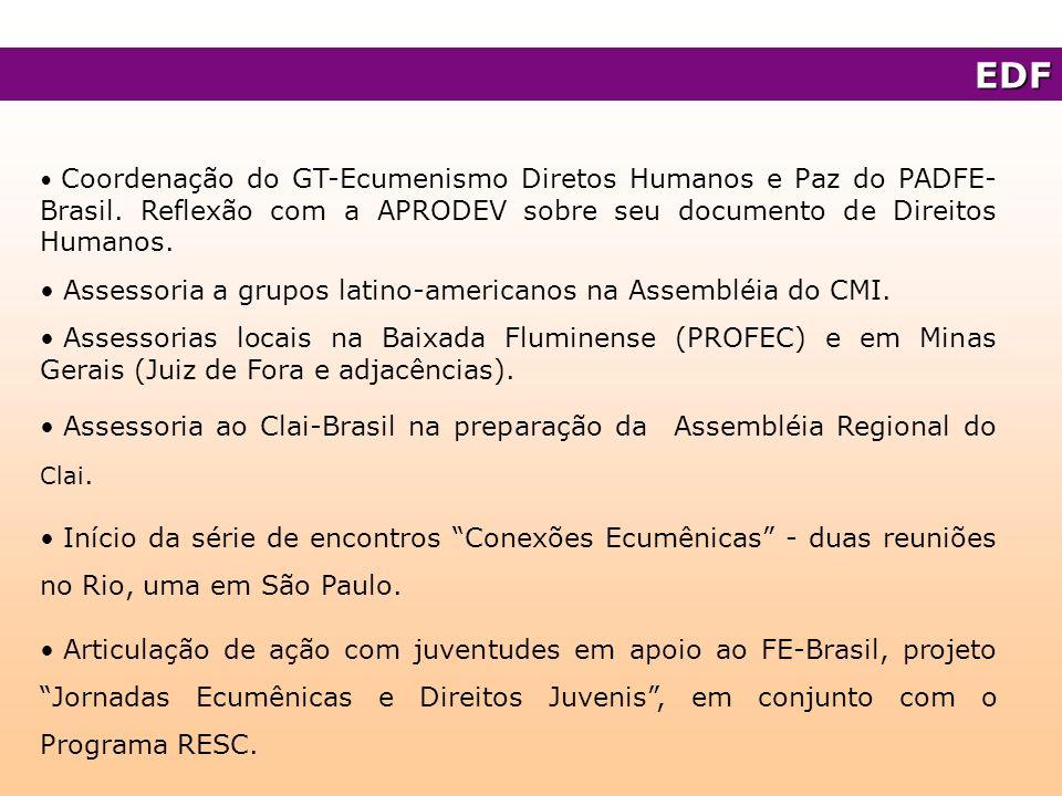 Coordenação do GT-Ecumenismo Diretos Humanos e Paz do PADFE- Brasil. Reflexão com a APRODEV sobre seu documento de Direitos Humanos. Assessoria a grup