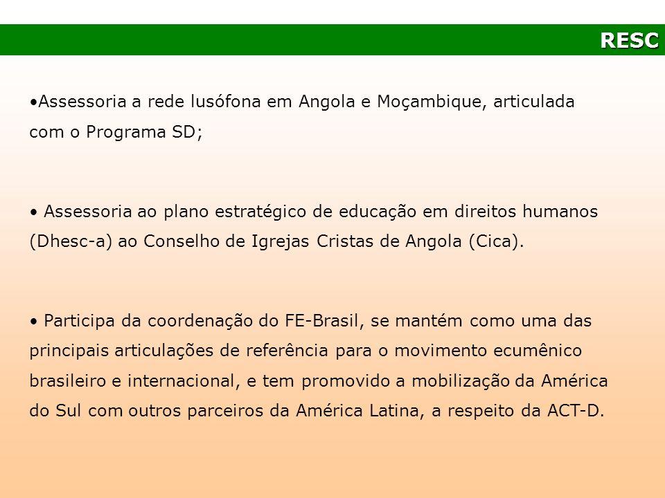 Assessoria a rede lusófona em Angola e Moçambique, articulada com o Programa SD; Assessoria ao plano estratégico de educação em direitos humanos (Dhes