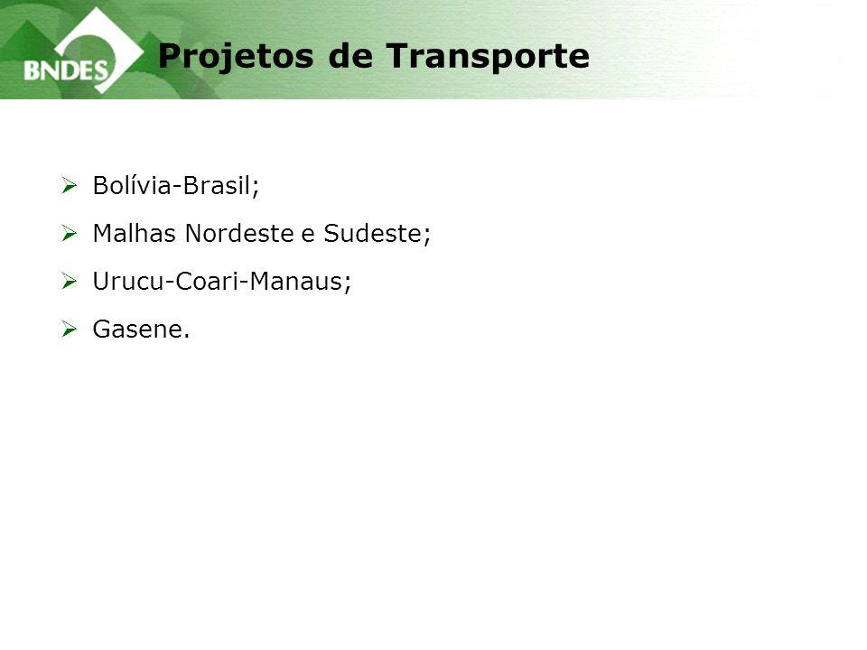 Projetos de Transporte Bolívia-Brasil; Malhas Nordeste e Sudeste; Urucu-Coari-Manaus; Gasene.