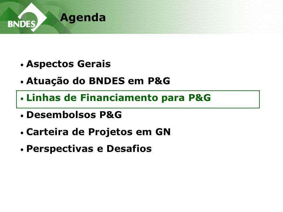 Aspectos Gerais Atuação do BNDES em P&G Linhas de Financiamento para P&G Desembolsos P&G Carteira de Projetos em GN Perspectivas e Desafios Agenda
