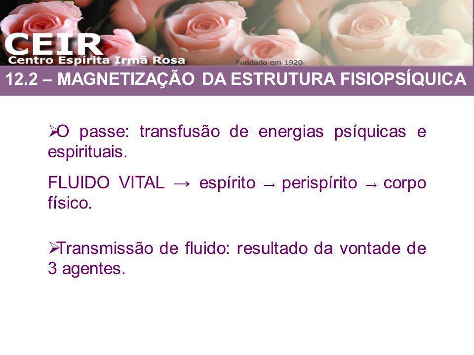 12.2 – MAGNETIZAÇÃO DA ESTRUTURA FISIOPSÍQUICA O passe: transfusão de energias psíquicas e espirituais. FLUIDO VITAL espírito perispírito corpo físico