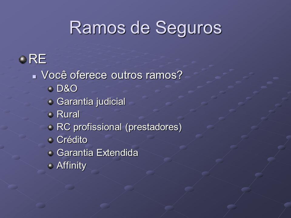 Ramos de Seguros RE Você oferece outros ramos? Você oferece outros ramos? D&O D&O Garantia judicial Garantia judicial Rural Rural RC profissional (pre