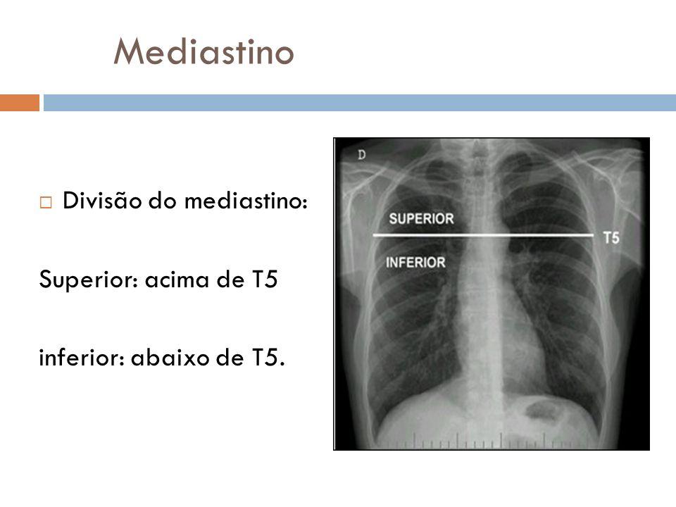 Mediastino Divisão do mediastino: Superior: acima de T5 inferior: abaixo de T5.