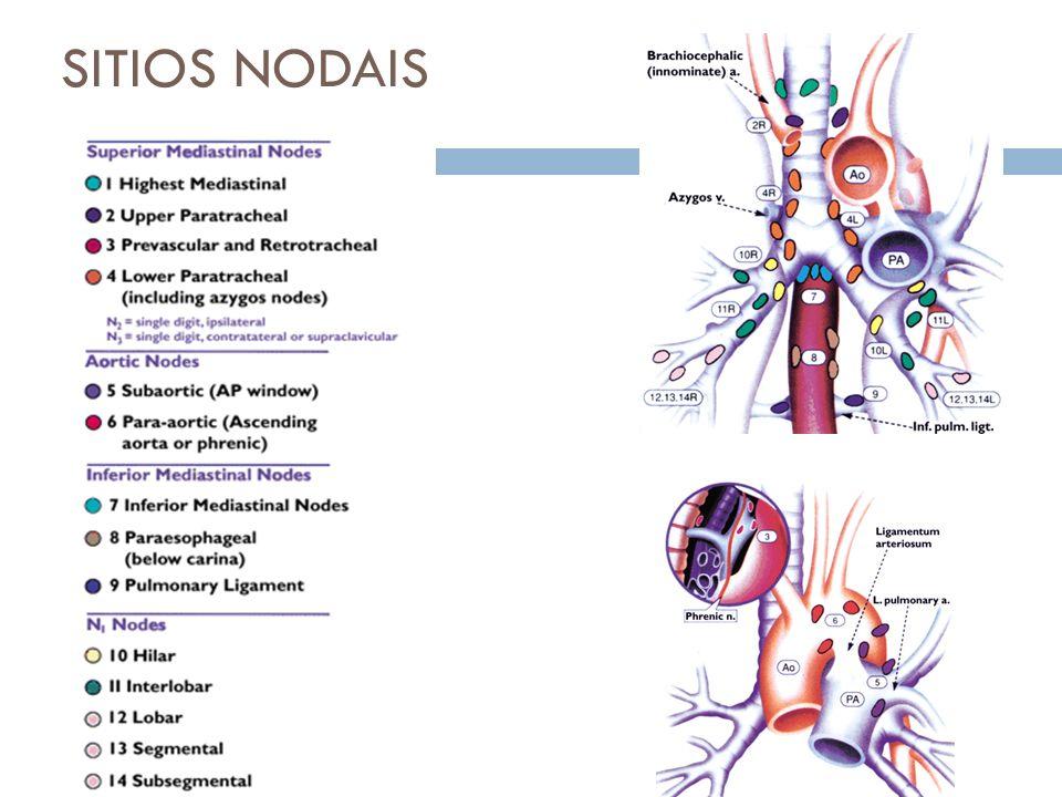 Mediastino Médio Patologias cardiacas.