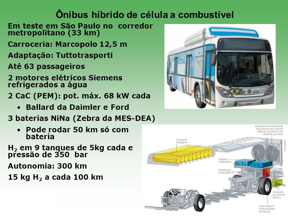 ABVE.org.br 28 Em teste em São Paulo no corredor metropolitano (33 km) Carroceria: Marcopolo 12,5 m Adaptação: Tuttotrasporti Até 63 passageiros 2 mot