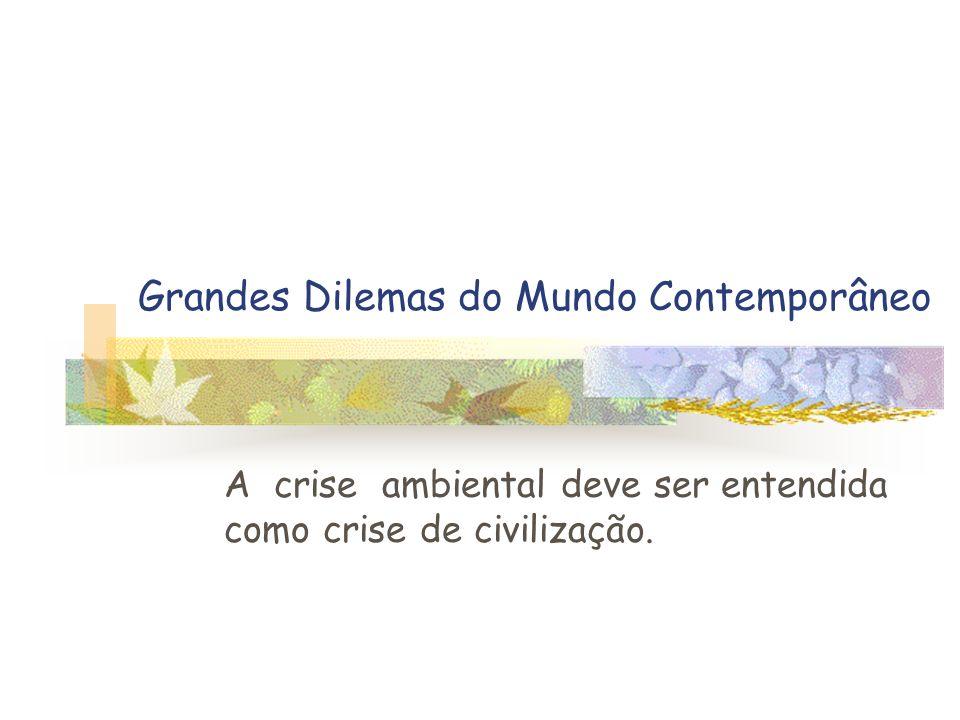 Grandes Dilemas do Mundo Contemporâneo A crise ambiental deve ser entendida como crise de civilização.