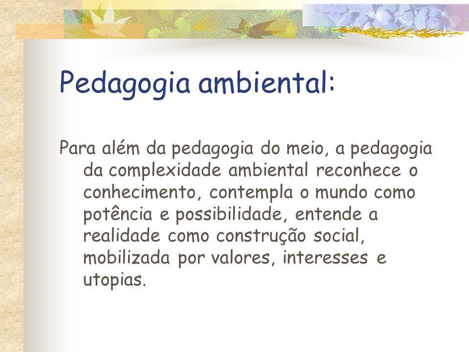 Para além da pedagogia do meio, a pedagogia da complexidade ambiental reconhece o conhecimento, contempla o mundo como potência e possibilidade, enten