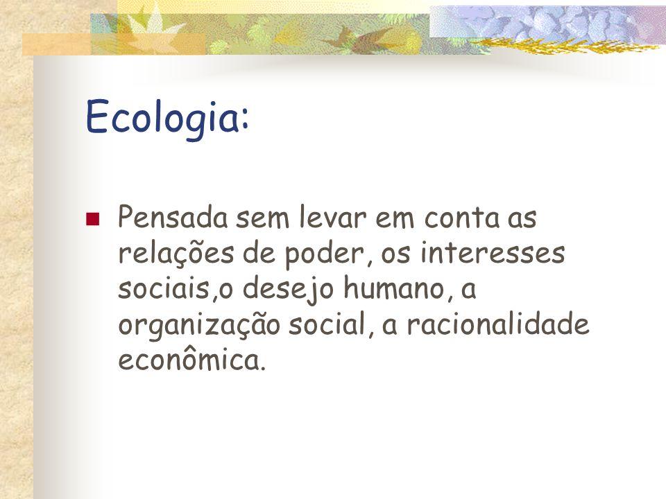 Referências Bibliográficas LEFF, E.Epistemologia ambiental.