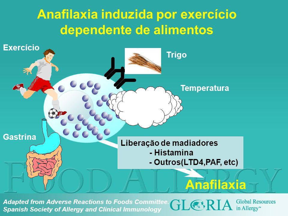 Gastrina Exercício Trigo Anafilaxia induzida por exercício dependente de alimentos Liberação de madiadores - Histamina - Outros(LTD4,PAF, etc) Tempera