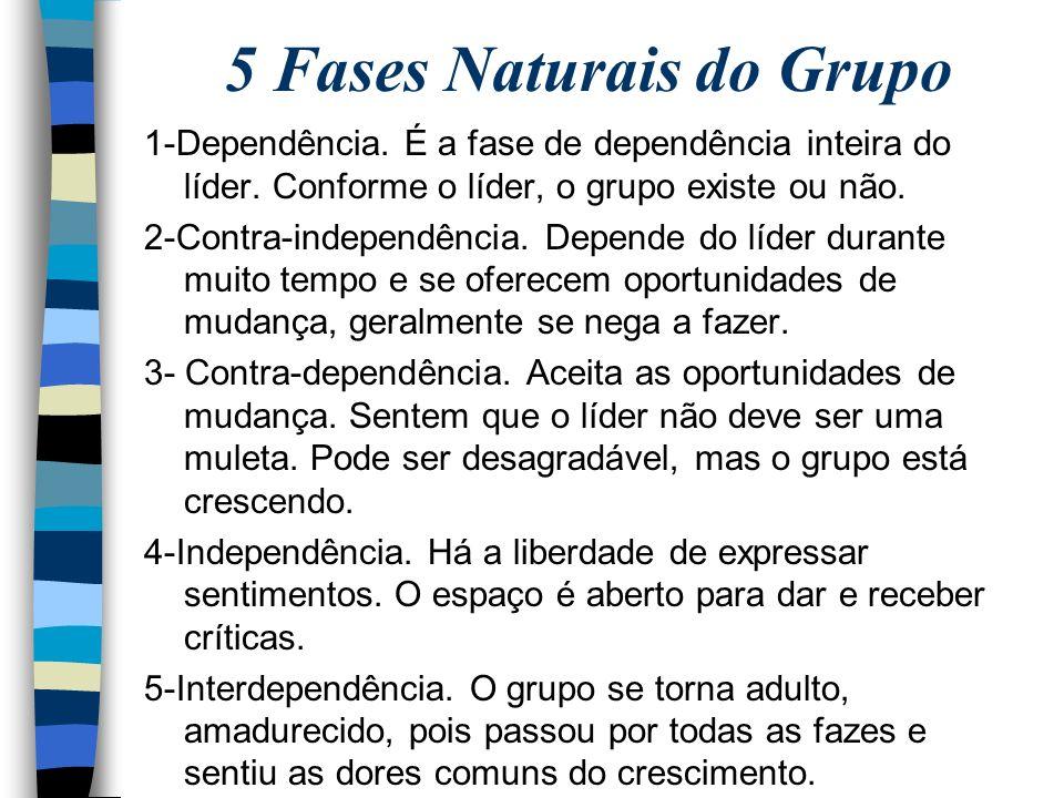 5 Fases Naturais do Grupo 1-Dependência.É a fase de dependência inteira do líder.