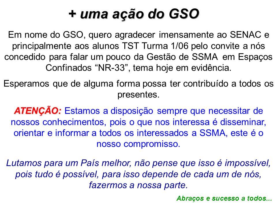 Em nome do GSO, quero agradecer imensamente ao SENAC e principalmente aos alunos TST Turma 1/06 pelo convite a nós concedido para falar um pouco da Ge