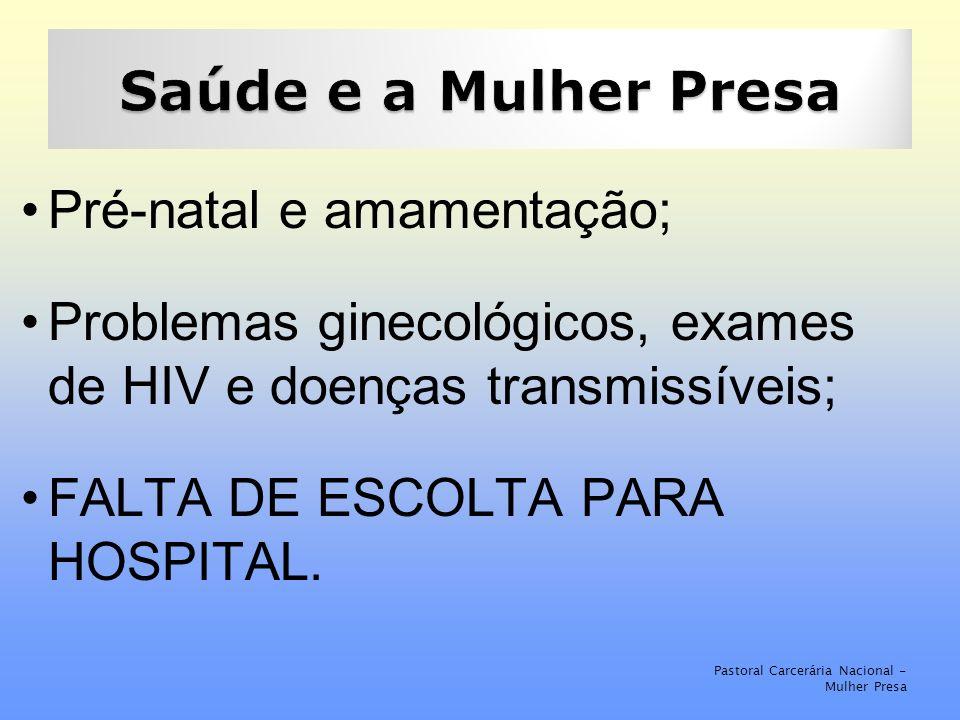 Pré-natal e amamentação; Problemas ginecológicos, exames de HIV e doenças transmissíveis; FALTA DE ESCOLTA PARA HOSPITAL.