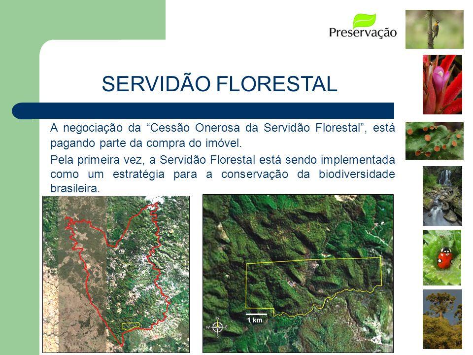 1.Gerenciamento das atividades do projeto. A negociação da Cessão Onerosa da Servidão Florestal, está pagando parte da compra do imóvel. Pela primeira