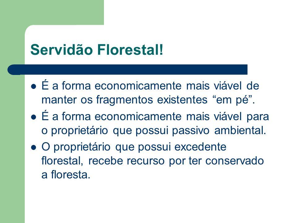 Servidão Florestal! É a forma economicamente mais viável de manter os fragmentos existentes em pé. É a forma economicamente mais viável para o proprie