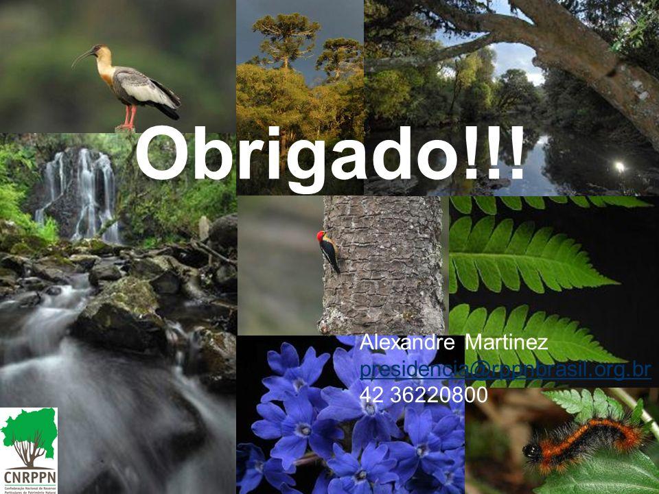 Obrigado!!! Alexandre Martinez presidencia@rppnbrasil.org.br 42 36220800