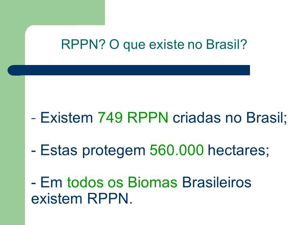 - E- E xistem 749 RPPN criadas no Brasil; - Estas protegem 560.000 hectares; - Em todos os Biomas Brasileiros existem RPPN. RPPN? O que existe no Bras