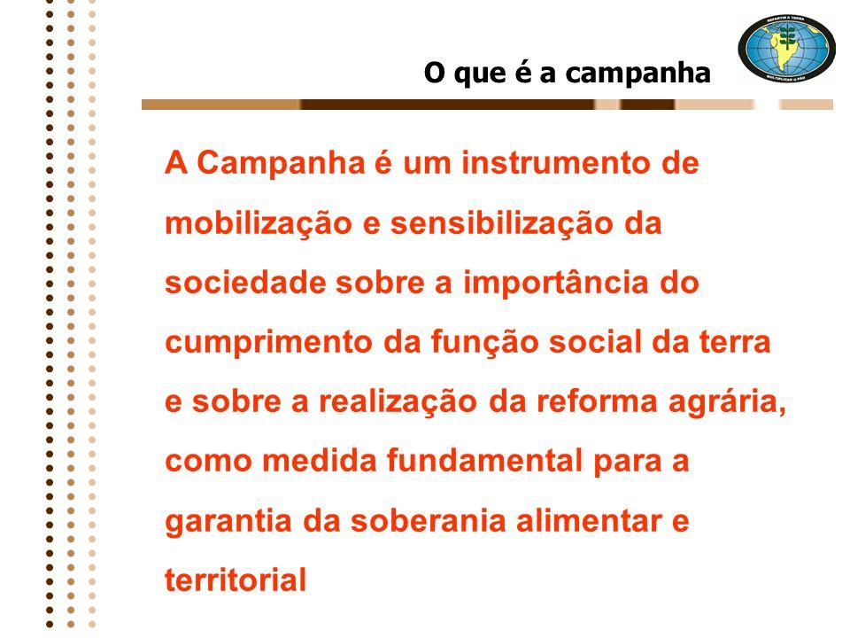 Objetivos da Campanha Organizar a campanha em todo o Brasil, dialogando e debatendo com a sociedade na escolas, igrejas, sindicatos, associações, asse