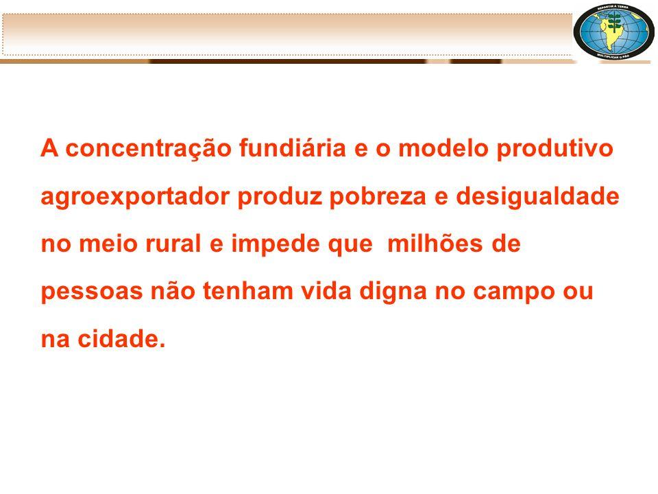 Atualmente, esta situação está ainda mais agravada pela ampliação da produção de monoculturas para exportação e pelo aumento da entrada do capital estrangeiro para compra de terras e investimento no mercado fundiário brasileiro.