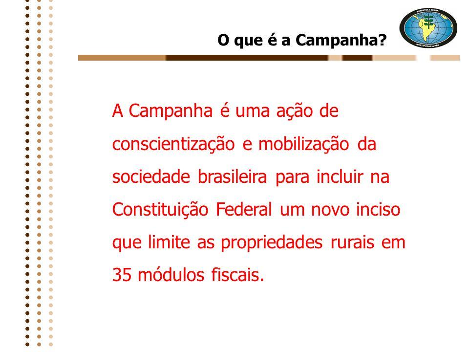 Um dos instrumentos que poderá interferir, decisivamente, na realização da reforma agrária e para a democratização da terra no Brasil, será a limitação da quantidade de terra que cada pessoa possa ter
