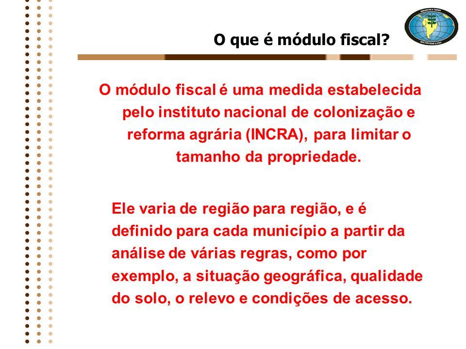 O que é a Campanha? A Campanha é uma ação de conscientização e mobilização da sociedade brasileira para incluir na Constituição Federal um novo inciso