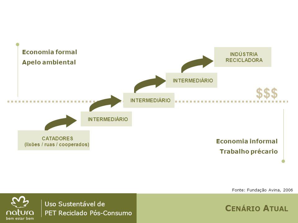 Uso Sustentável de PET Reciclado Pós-Consumo Economia formal Apelo ambiental $$$ INDÚSTRIA RECICLADORA Economia informal Trabalho précario Fonte: Fund
