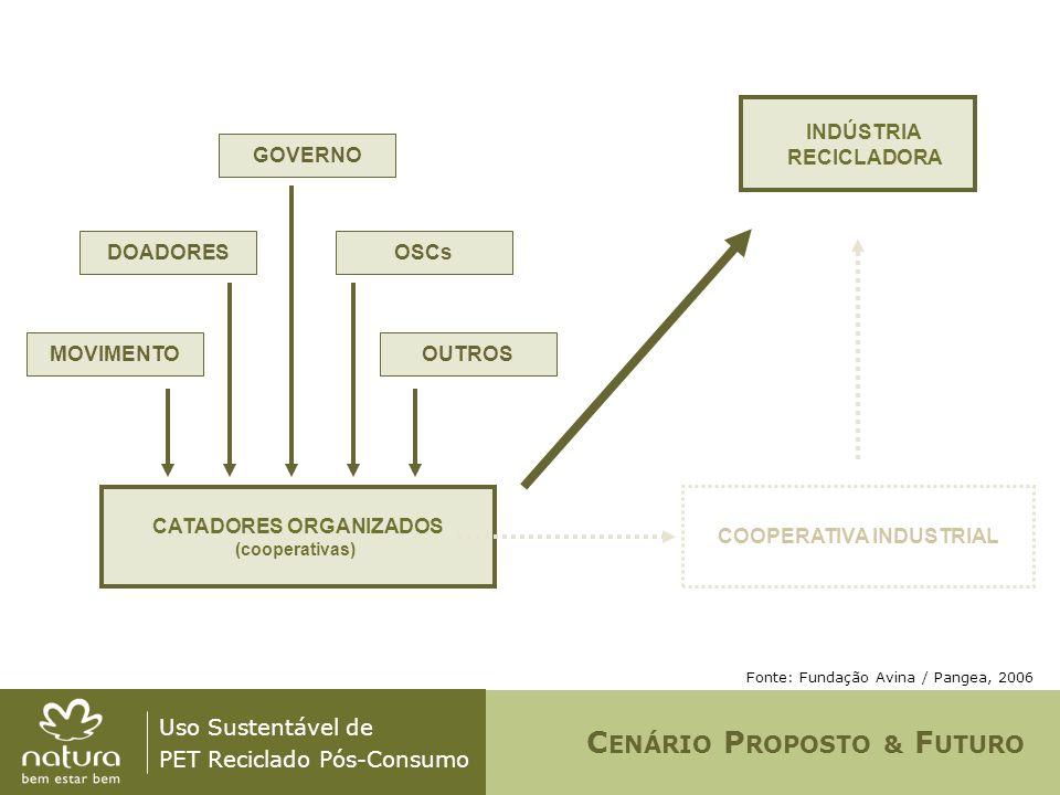 Uso Sustentável de PET Reciclado Pós-Consumo Fonte: Fundação Avina / Pangea, 2006 CATADORES ORGANIZADOS (cooperativas) MOVIMENTO COOPERATIVA INDUSTRIA