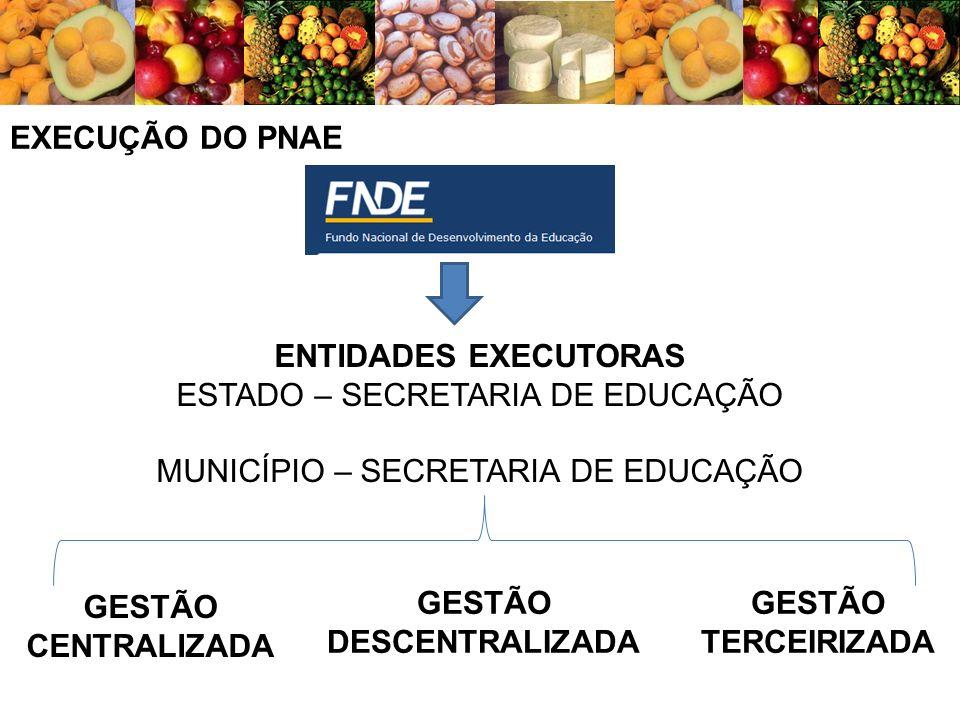 EXECUÇÃO DO PNAE ENTIDADES EXECUTORAS ESTADO – SECRETARIA DE EDUCAÇÃO MUNICÍPIO – SECRETARIA DE EDUCAÇÃO GESTÃO CENTRALIZADA GESTÃO DESCENTRALIZADA GE