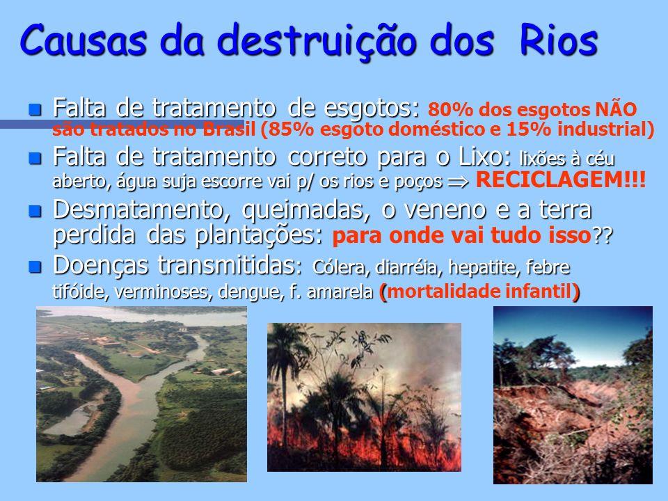 n Falta de tratamento de esgotos: n Falta de tratamento de esgotos: 80% dos esgotos NÃO são tratados no Brasil (85% esgoto doméstico e 15% industrial)