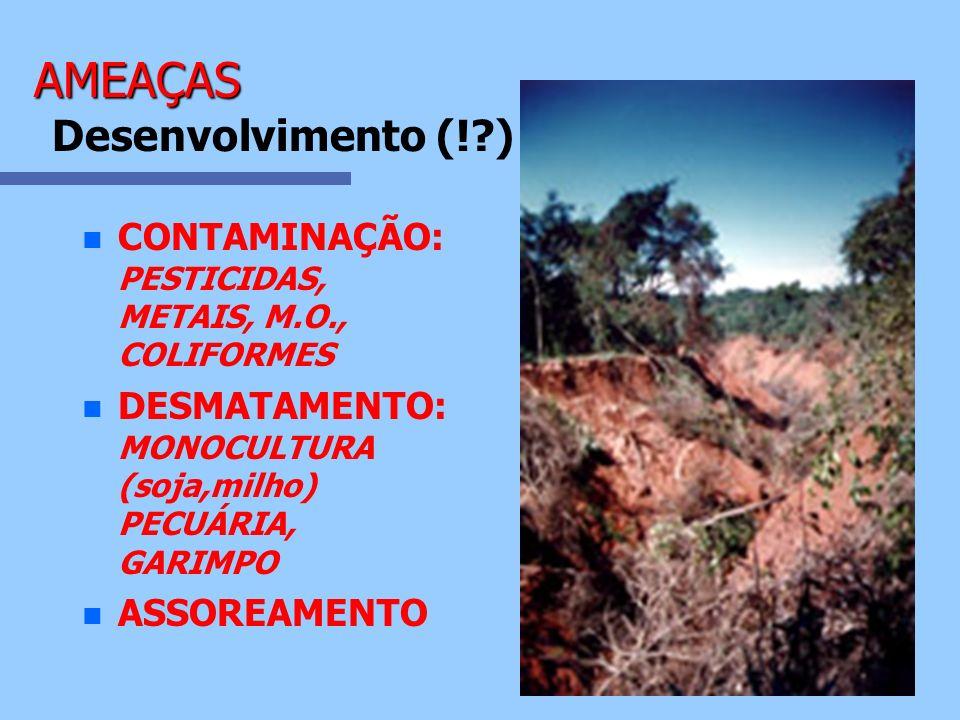 n n CONTAMINAÇÃO: PESTICIDAS, METAIS, M.O., COLIFORMES n n DESMATAMENTO: MONOCULTURA (soja,milho) PECUÁRIA, GARIMPO n n ASSOREAMENTO AMEAÇAS AMEAÇAS D