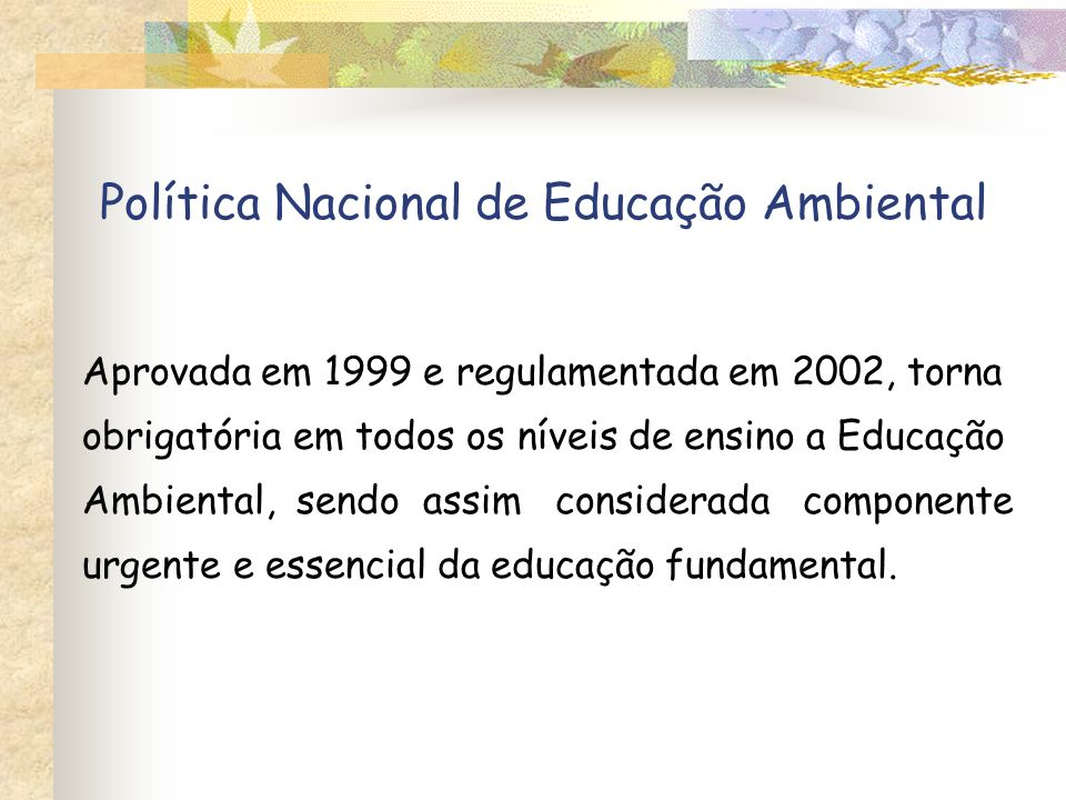 Política Nacional de Educação Ambiental Aprovada em 1999 e regulamentada em 2002, torna obrigatória em todos os níveis de ensino a Educação Ambiental,
