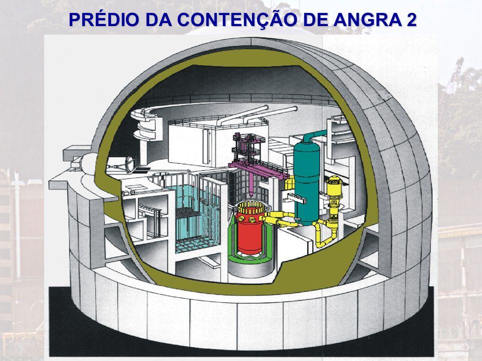 5 A ENERGIA NUCLEAR NO BRASIL
